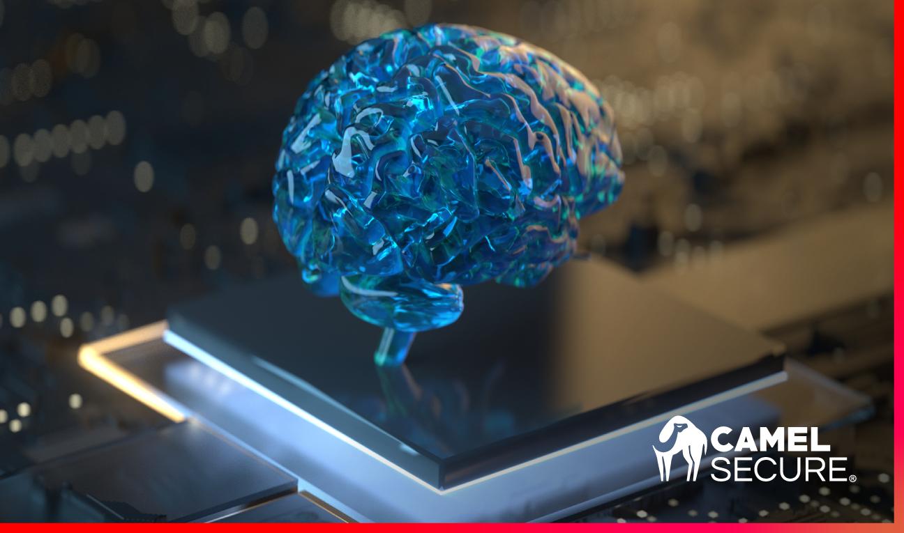 Camel Secure: innovación y confianza en ciberseguridad.